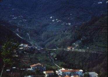 La montagna e il bosco
