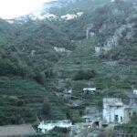 terraz amalfi