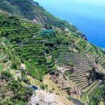 I terrazzamenti della Costa d'Amalfi come paesaggio culturale UNESCO. Intervista a Marina Fumo, direttrice Cittam
