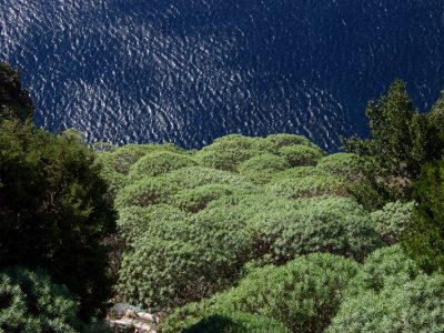 Cetara - Natura Sommersa